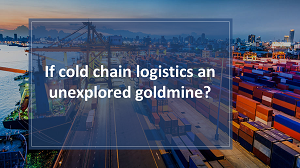 cold chain logistics
